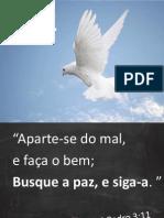Paz- Projeto Viver-Versão de Apresentação