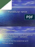 Mandibular+nerve