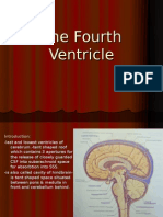 The Fourth Ventricle