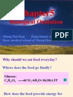 biological oxidation using