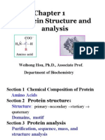 chapter 1 protein
