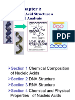 chapter 2 nucleic acid