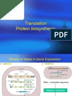 protein biosynthesis1