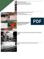 BD1_Prot.pdf