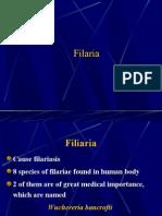 HELMINTHS > nematodes > Filaria