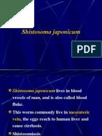 HELMINTHS > trematodes > shistosoma