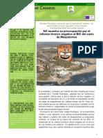 Boletín XXIX Julio 2014
