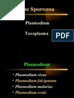 protozoa > sprorozoa > malaria