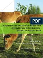 Economists at Large (2014) a Benefit-cost Analysis of WSPAs 2012 Intervention in the Dhemaji District of Assam, India