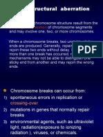 chromosome-2