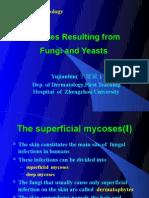 fungal 1