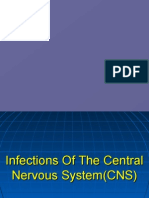 CNS infection paper1 2006