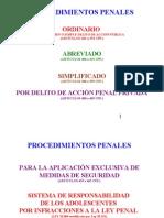(2)ESQUEMA PROCEDIMIENTOS