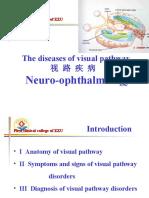 visual pathway diseases