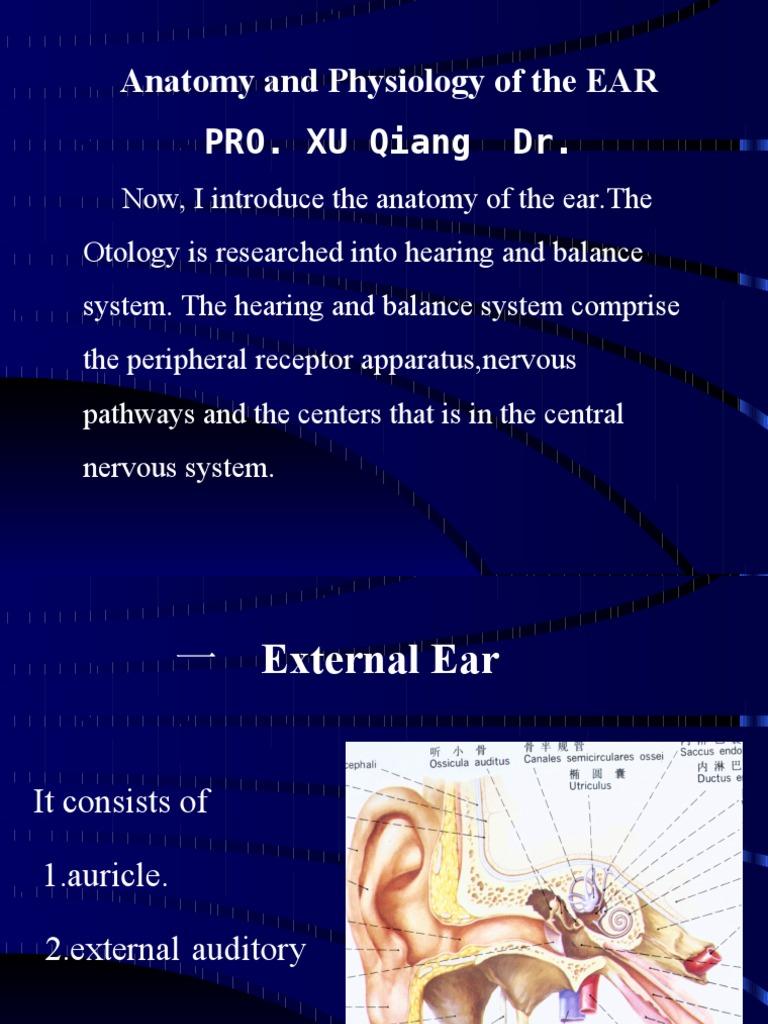 anatomy n phs of ear | Ear | Hearing