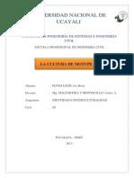 LA CULTURA DE MOTUPE  .docx