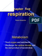 respiration one 2
