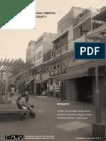 Caracterización de La Zona Comercial Del Conglomerado de Caquetá