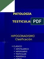 PATOLOGIA-TESTICULAR