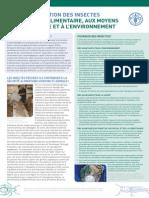 Rapport de la FAO