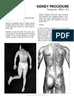 Kidney procedure-Bowen