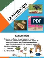 Presentación Multimedia La Nutrición