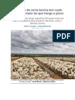 Produção de Carne Bovina Tem Custo Ambiental Maior Do Que Frango e Porco
