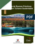 GuiabuenasPracticas10-2008.pdf