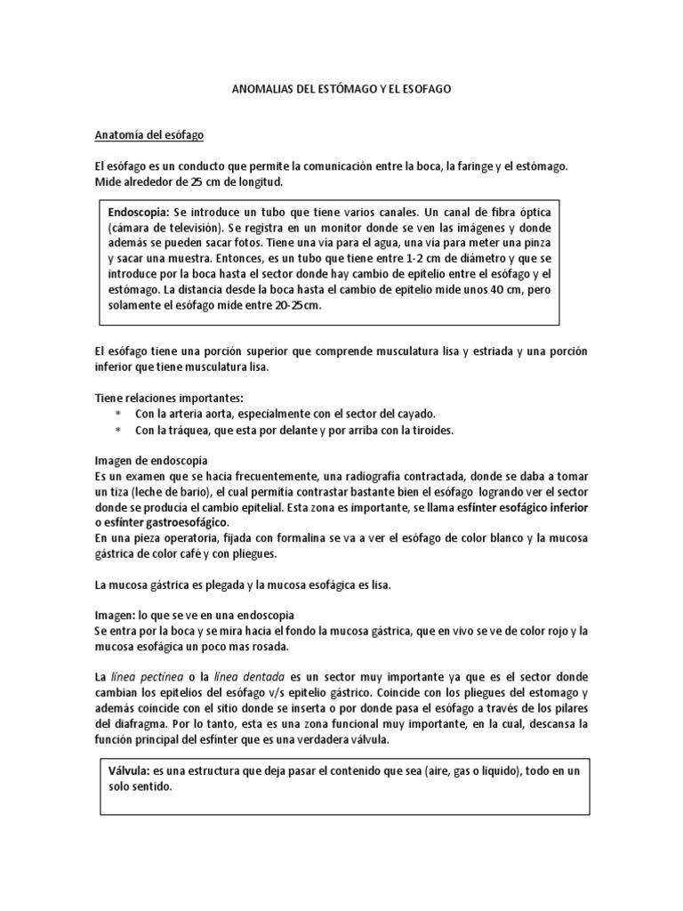 ANOMALIAS DEL ESTÓMAGO Y EL ESOFAGO.docx