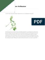 Philippine Modern