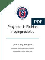Proyecto 1 - 5,0