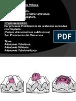 2013 Patología de Intestino Delgado y Grueso Continuacion Gastroesofagica