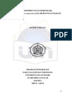 achen.pdf