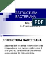 Taller No.2 Estructura Bacteriana