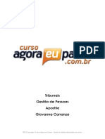 PDF AEP Tribunais GestaodePessoas Apostila GiovannaCarranza