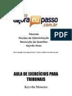 PDF AEP TribunaisExercicios NocoesdeAdministracao Aula01 KeyvilaMenezes