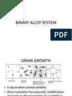 2. Binary Alloy System