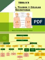 Órganos, Tejidos y Células Secretoras