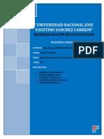 BIODEGRADACIÓN (1) (1)