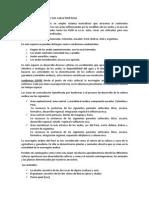 La Ecorregión Andina y Sus Características