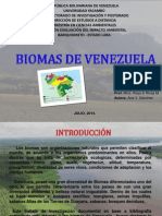 Trabajo de Biomas de Venezuela. Ana Sánchez