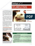 Dialnet-FichaDePatologiaPasteurelosis-2869248