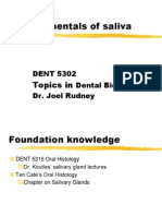 Fundamentals of Saliva