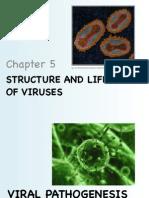 micro study
