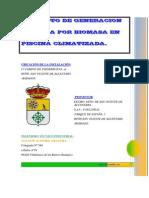 Documentos Pyto Generacion Biomasa San Vicente Sc Cae9821b