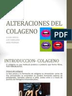Alteraciones del colageno