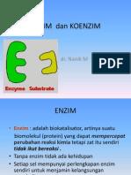 Enzim.Metabolisme Xenobiotik