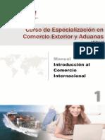 Manual Introducción Al Comercio Exterior