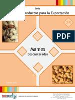 24 - PPE Manies Descascaradas - REDIEX