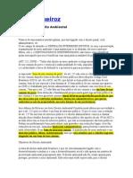 Direito Ambiental - Andre Queiroz
